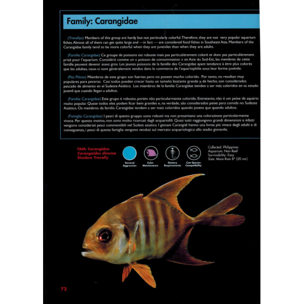 Marine Aquarium Companion Southeast Asia EN, FR, DE, ES, IT, PO